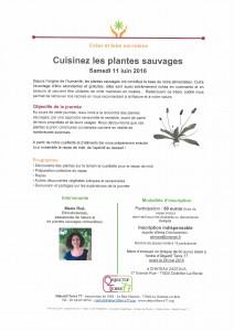 Apprendre à cuisiner les plantes sauvages @ Château Zastava   Châtillon-la-Borde   Île-de-France   France