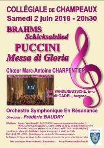 Concert  BRAHMS - PUCCINI à Champeaux @ Collégiale de Champeaux | Champeaux | Île-de-France | France
