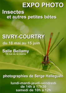 Insectes et autres petites bêtes @ Sivry-Courtry